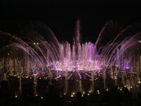 Ночь в музее - 2010. Москва, парк Царицыно (7)- светомузыкальный фонтан. Фото Николая Ефремова